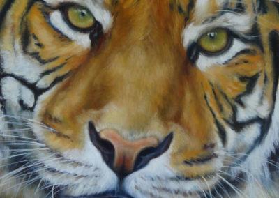 """""""Je suis le Tigre ...Et vous ?"""" 40 x 40 cm"""
