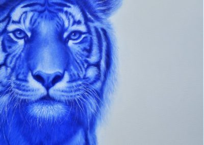 Tigre 60 x 60 cm